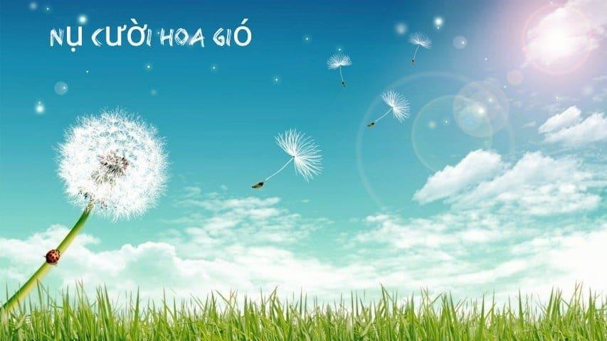 nụ cười hoa gió